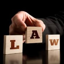 Buy  law essay guidelines
